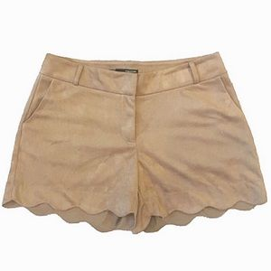 MAURICES Faux Suede Scallop Hem Shorts Light Brown